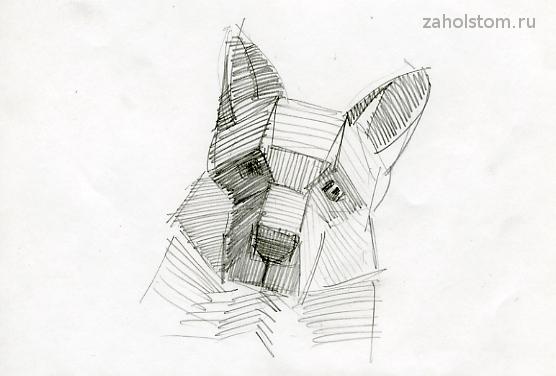 Как рисовать собаку_схема 2