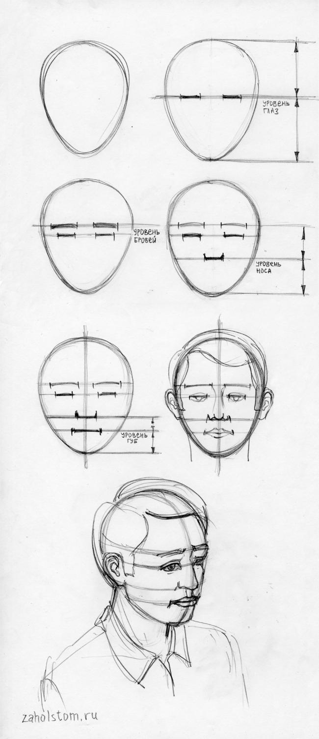 Пропорции в рисунке лица человека
