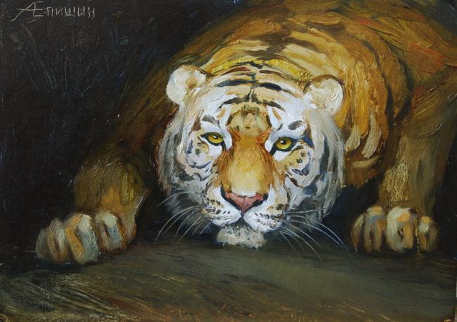 Тигр перед прыжком_650x