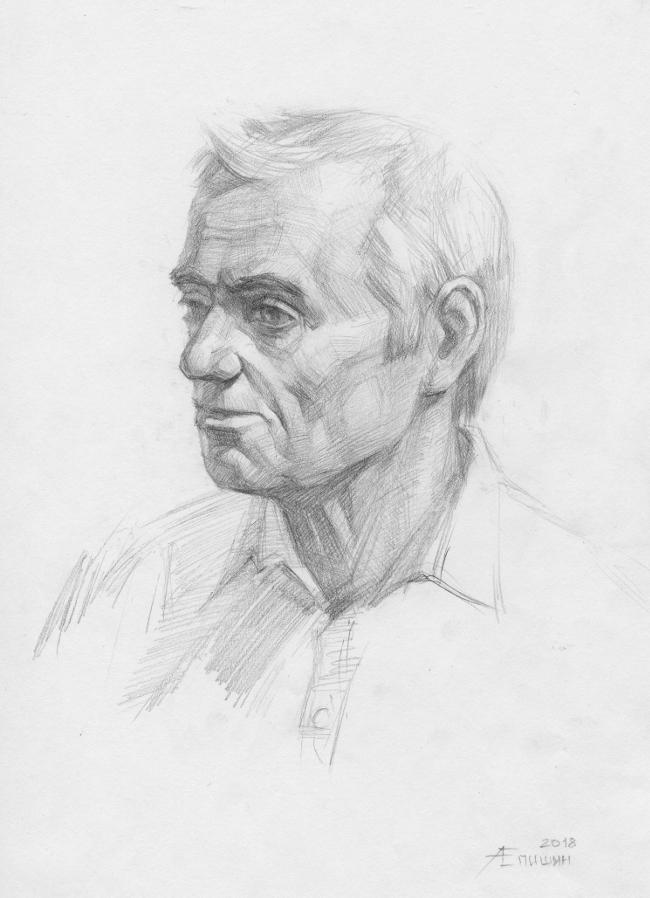 Поэтапный рисунок головы человека