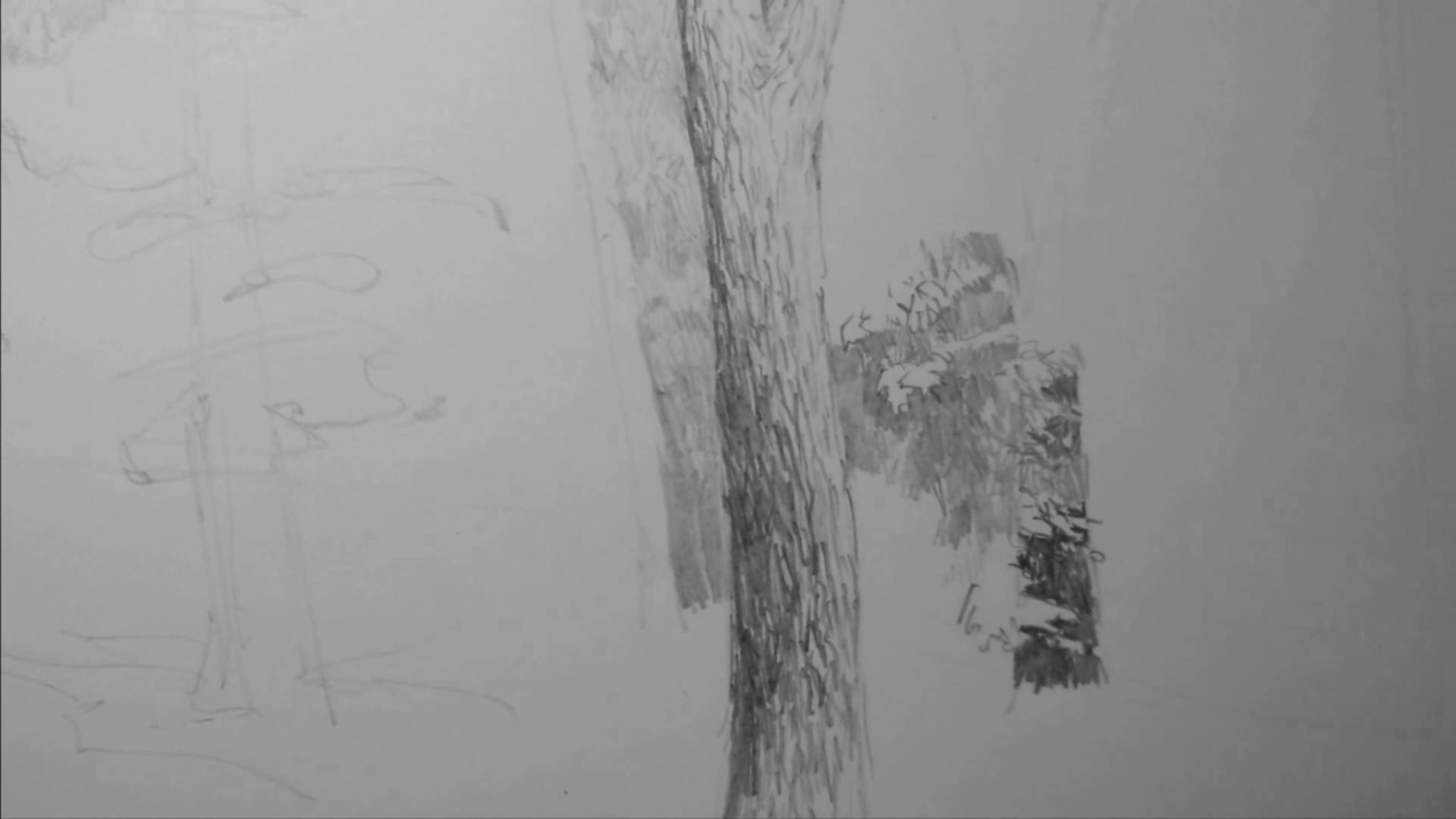 001 Рисунок карандашом_В лесу