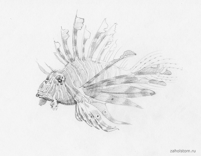 001 Фантастические формы на глубине океана