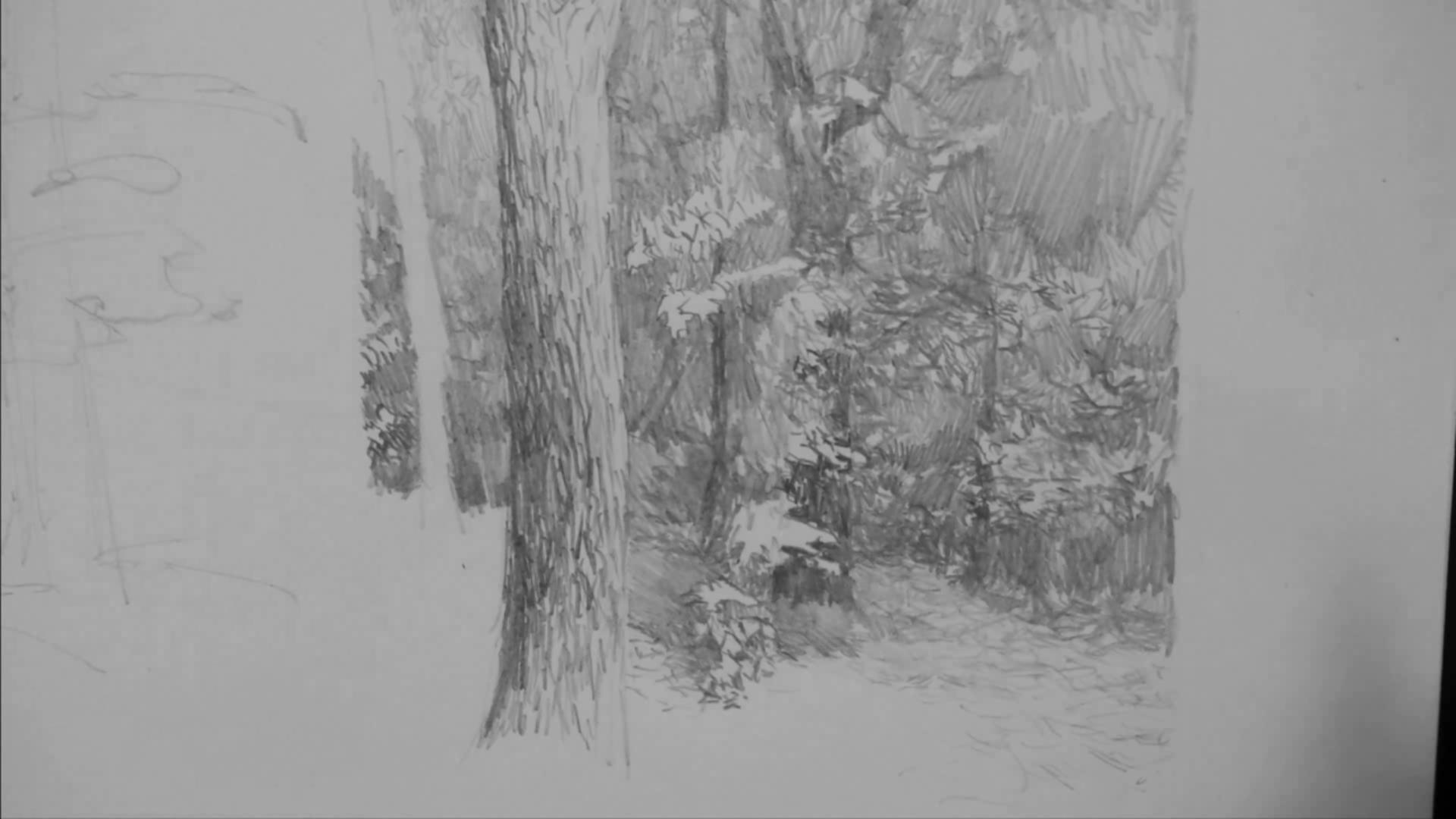 002 Рисунок карандашом_В лесу