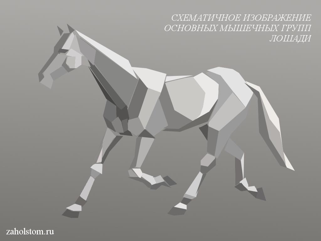 003 Как рисовать лошадь. Алексей Епишин