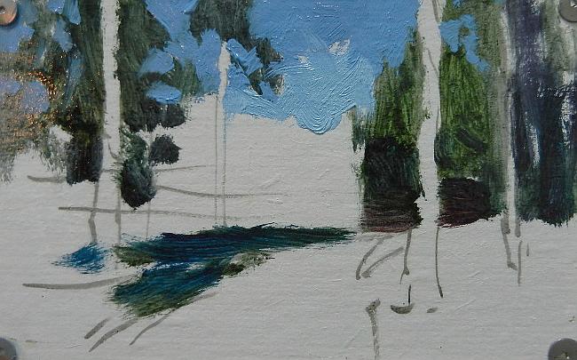 003 Лес на берегу Сурского водохранилища