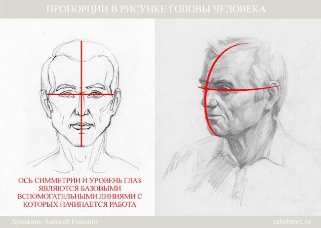 003 Пропорции в рисунке головы человека