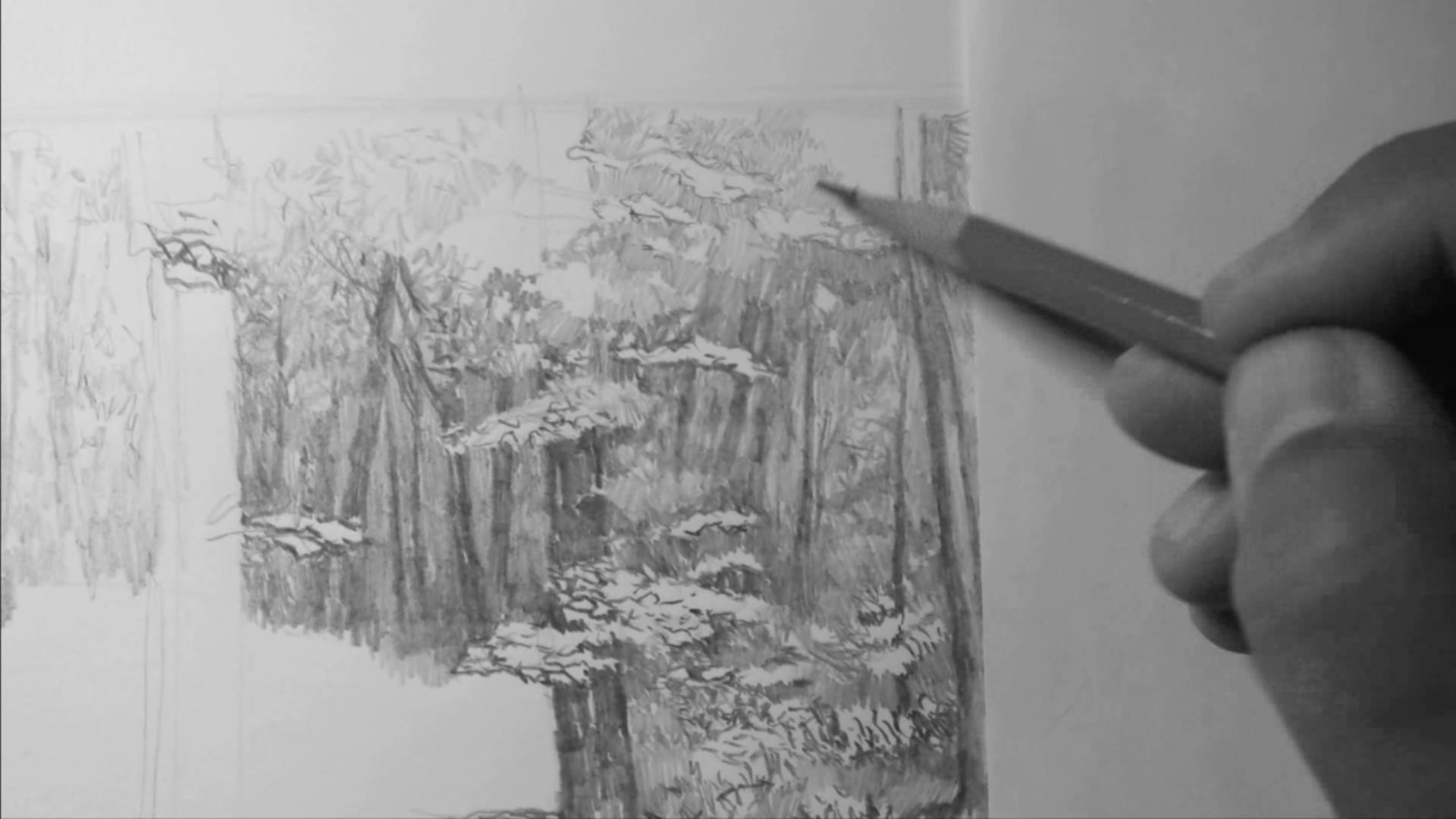 003 Рисунок карандашом_В лесу