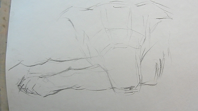 004 Взгляд молчаливого пса. Рисунок углем