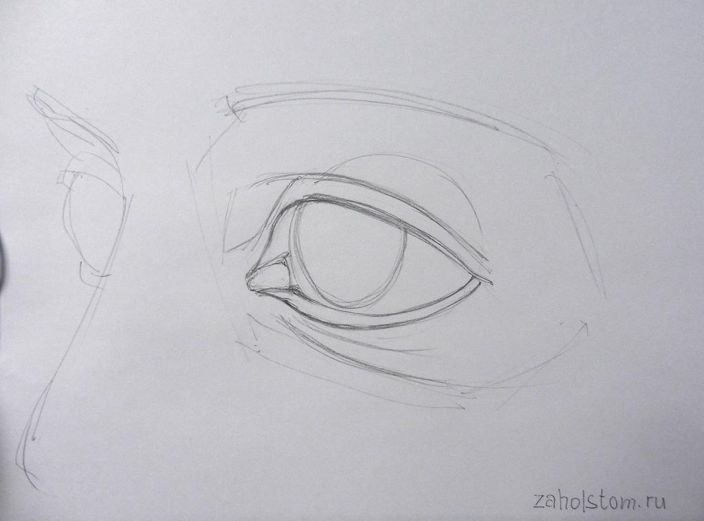 004 Как рисовать глаза