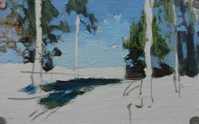 004 Лес на берегу Сурского водохранилища
