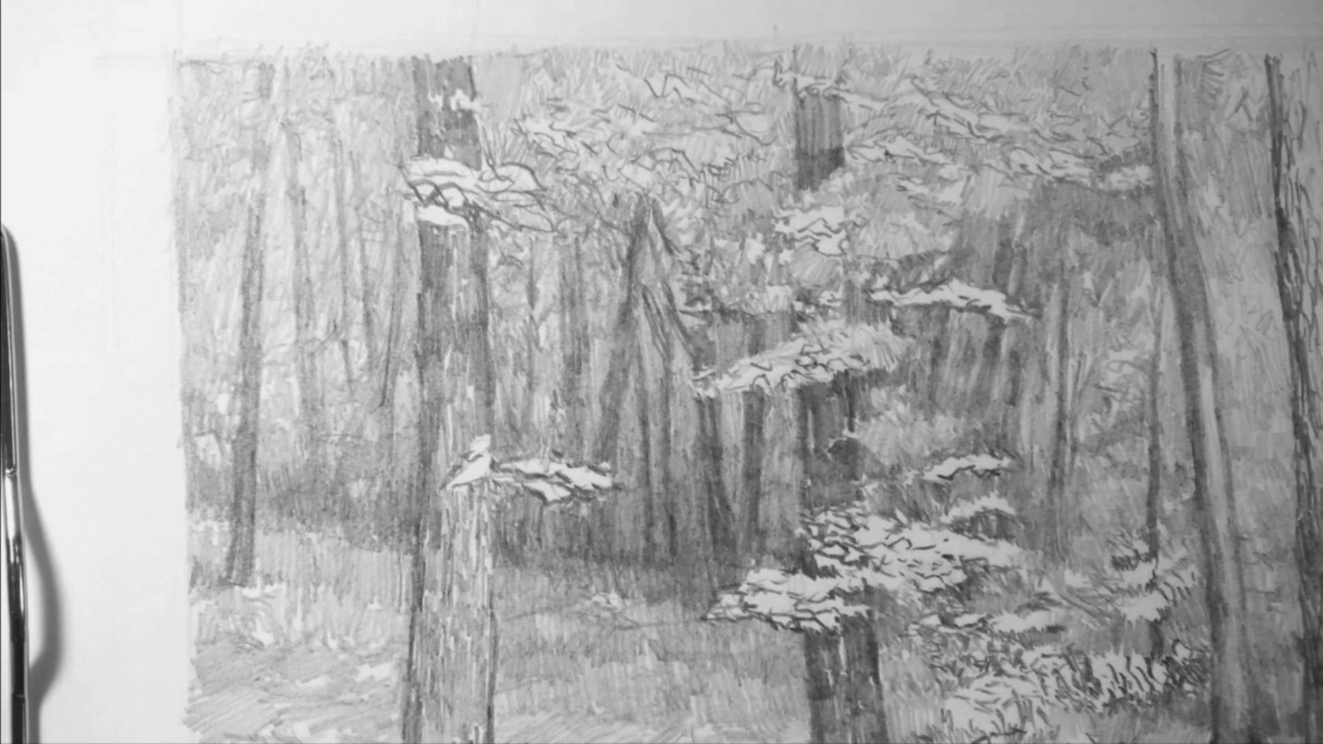004 Рисунок карандашом_В лесу