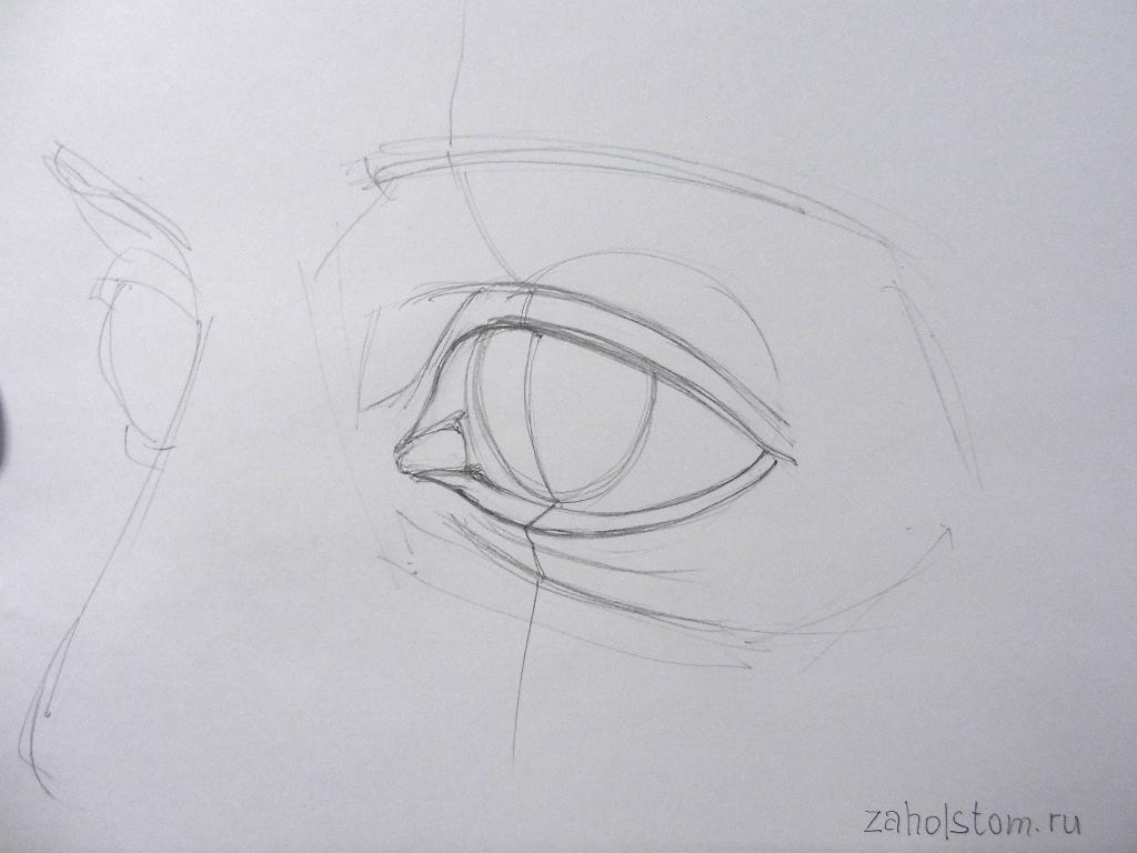 005 Как рисовать глаза