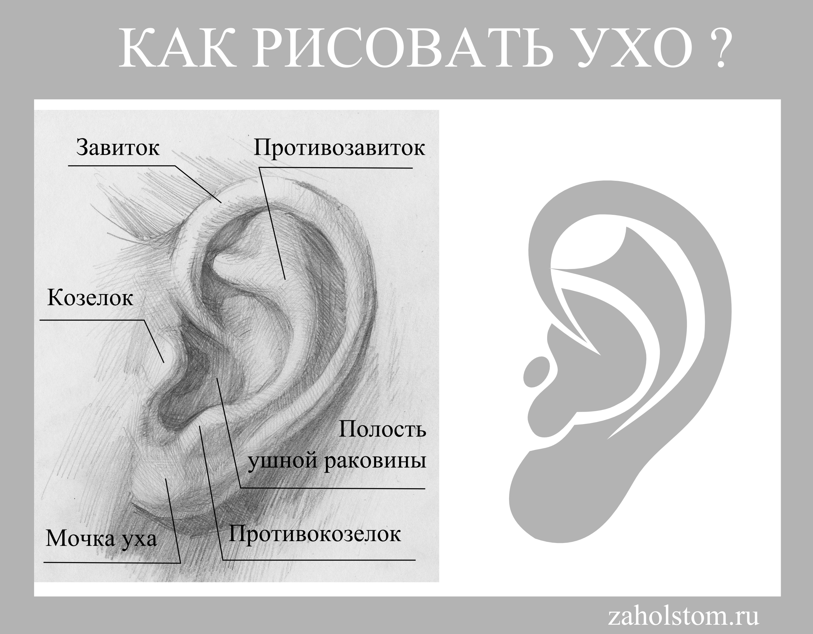 005 Как рисовать ухо. Названия. Художник Алексей Епишин