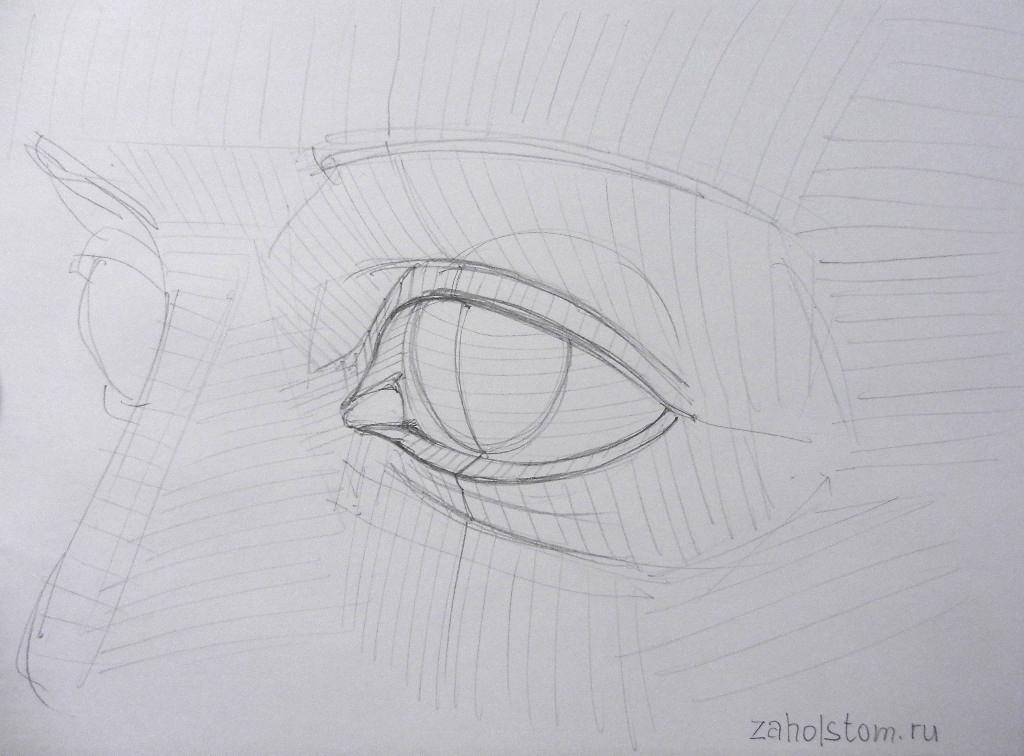 006 Как рисовать глаза