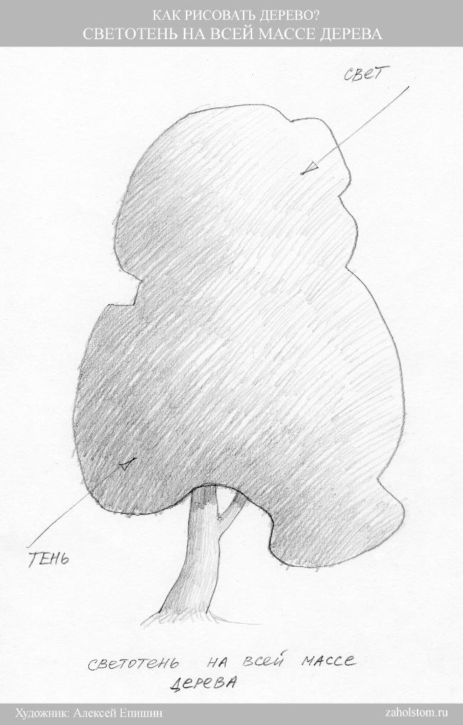006 Как рисовать дерево. Светотень на всей массе дерева