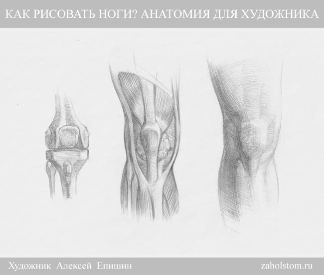 007 Как рисовать ноги_Анатомия для художника