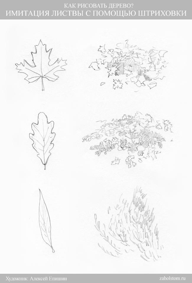 008 Как рисовать дерево. Имитация листвы штриховкой