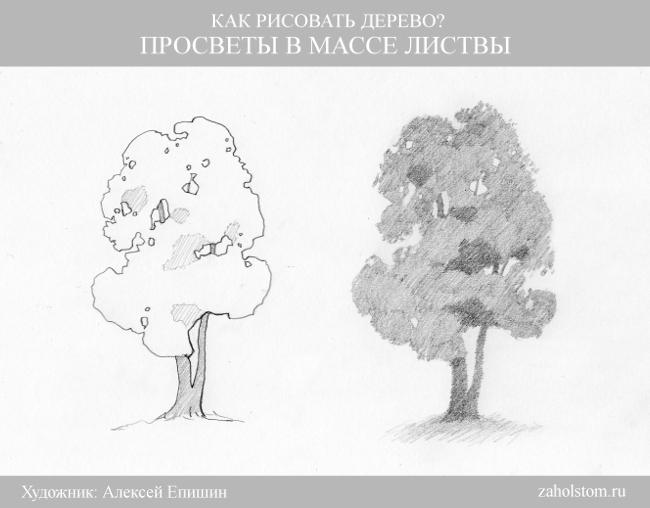 009 Как рисовать дерево. Просветы в массе листвы