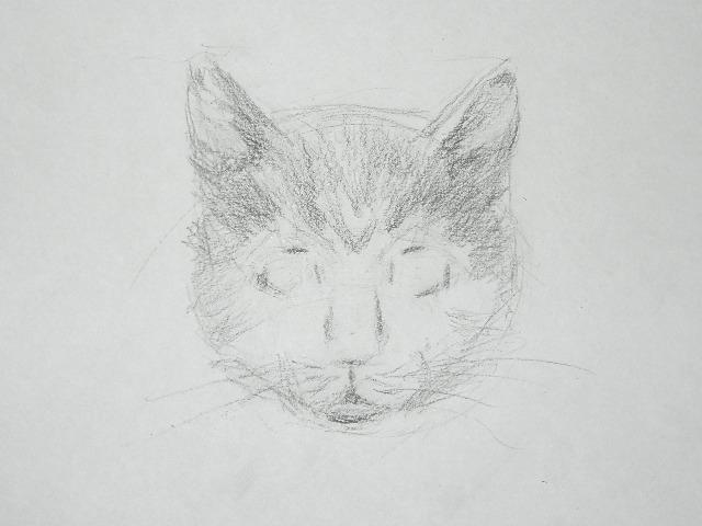 010 Как рисовать кошку