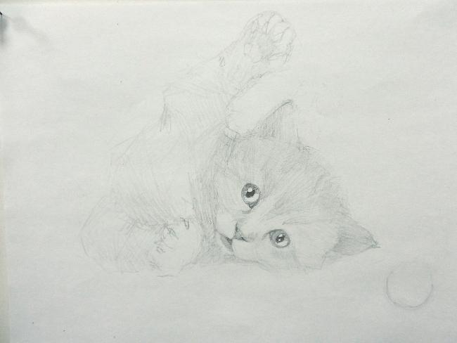 011 Игривый котёнок