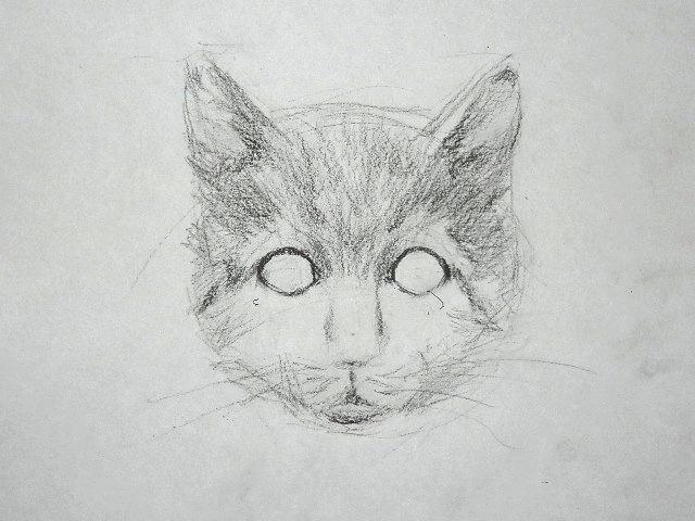 011 Как рисовать кошку