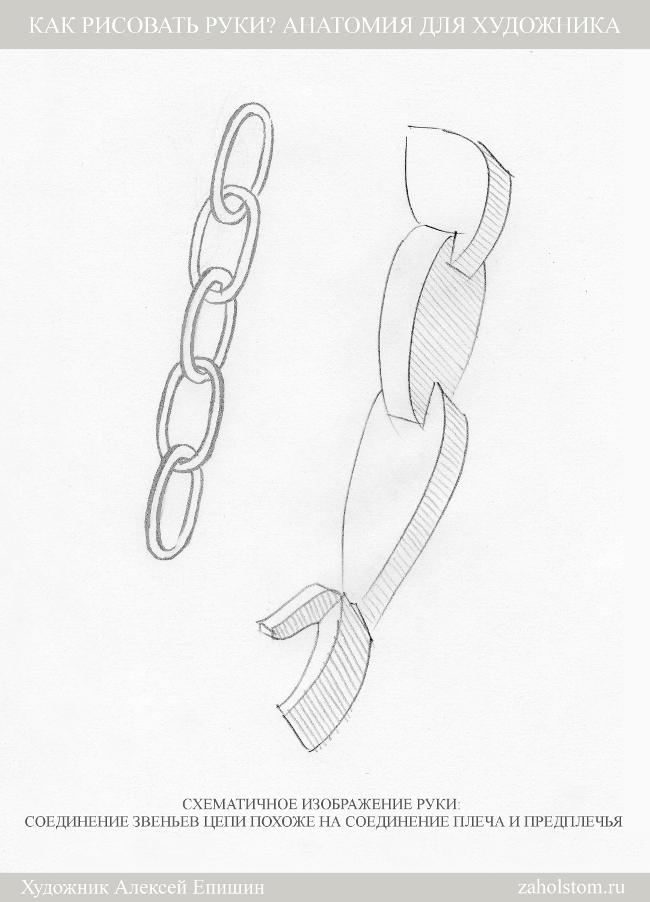 012 Как рисовать руки. Анатомия для художника