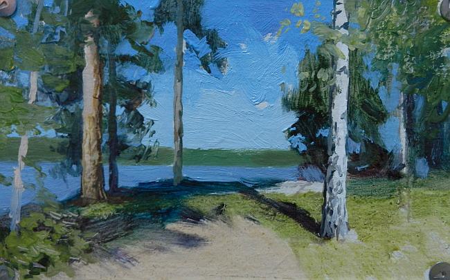 013 Лес на берегу Сурского водохранилища