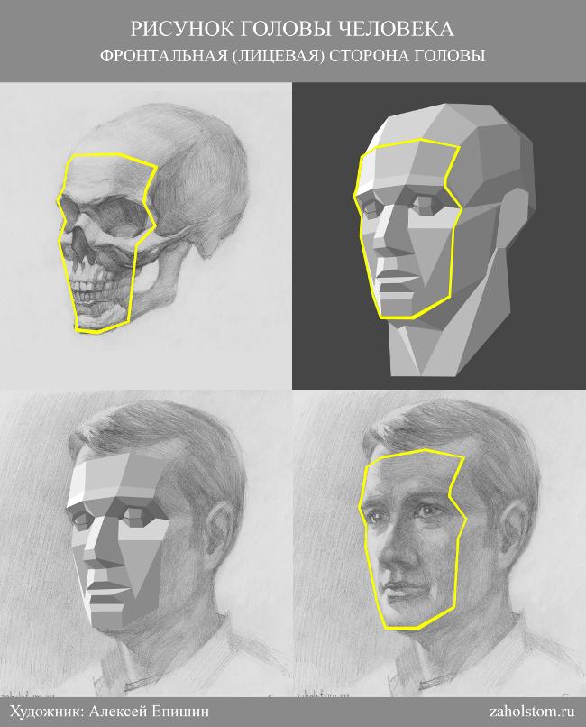 014 Как рисовать портрет. Фронтальная сторона головы