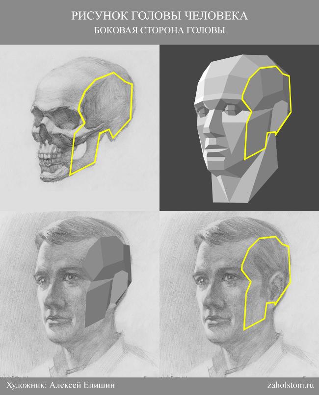 015 Как рисовать портрет. Боковая сторона головы