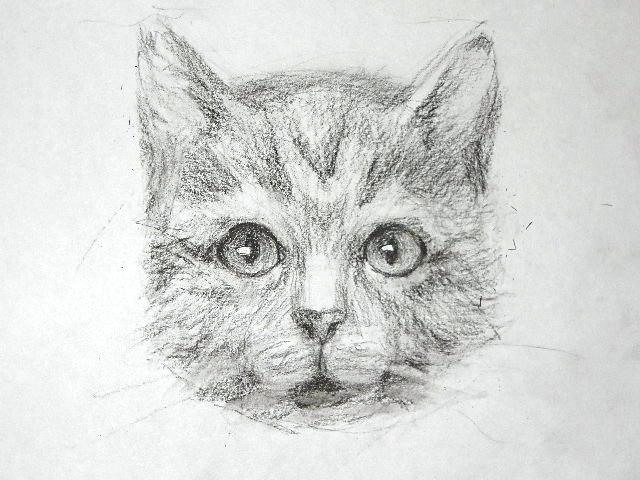 016 Как рисовать кошку