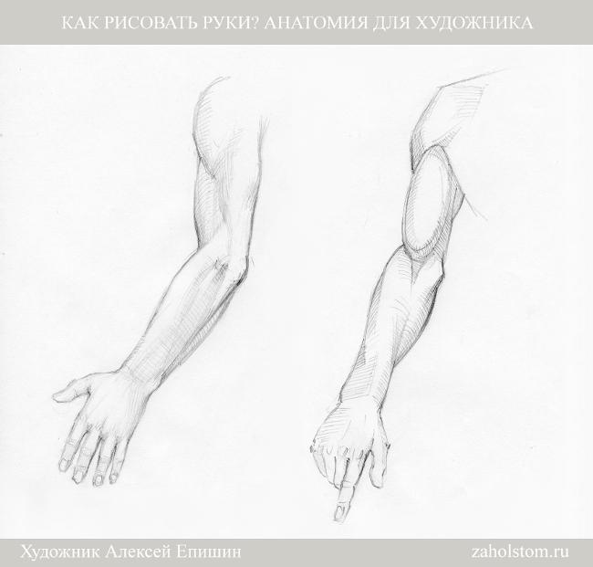 016 Как рисовать руки. Анатомия для художника