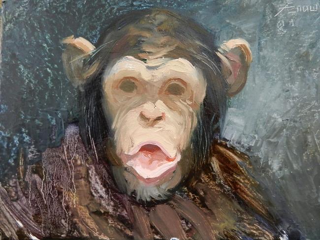 018 Портрет шимпанзе. Живопись маслом. Художник Алексей Епишин