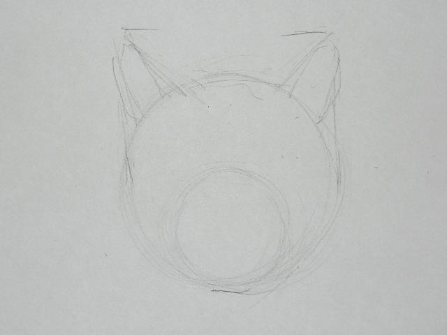 02 Как рисовать кошку
