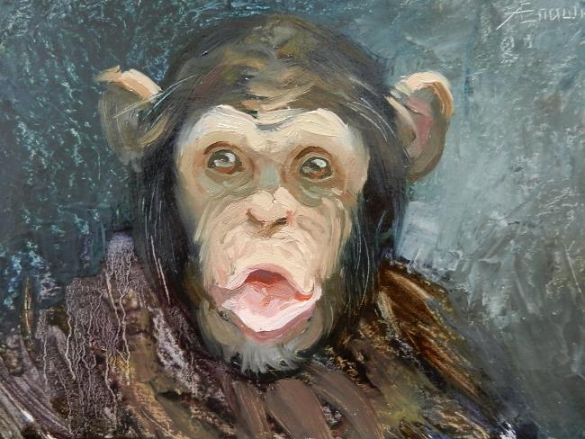 021 Портрет шимпанзе. Живопись маслом. Художник Алексей Епишин