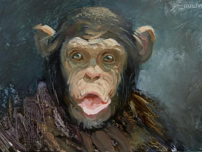 024 Портрет шимпанзе. Живопись маслом. Художник Алексей Епишин