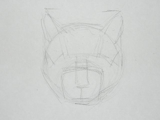 03 Как рисовать кошку