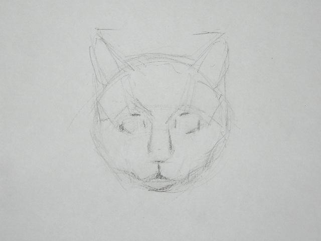 06 Как рисовать кошку