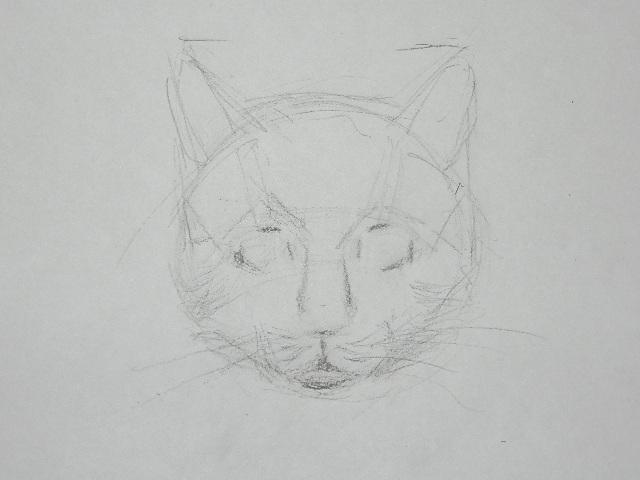 07 Как рисовать кошку