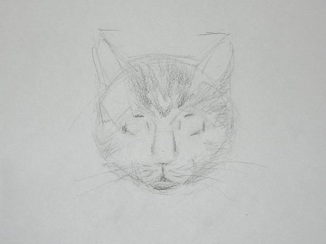08 Как рисовать кошку